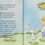 Babybogen – barnets bog til drenge-1366