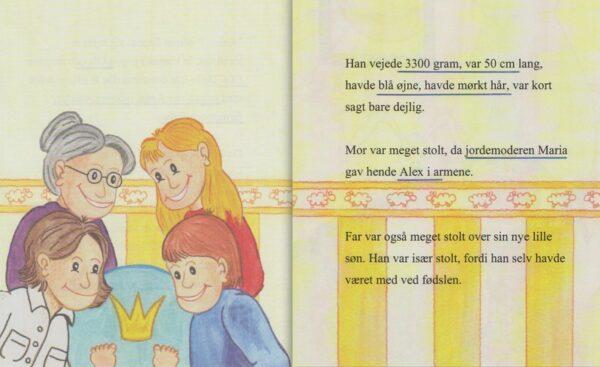 Babybogen – min første bog til trillinger – 3 bøger-1305