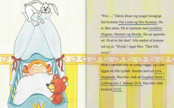Babybog – barnets bog til piger -1359