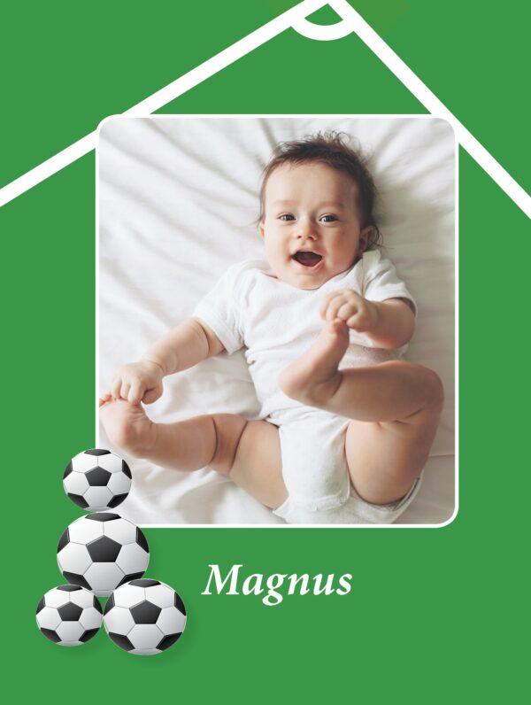 Fodboldbogen med fotoside-2219