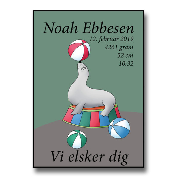 fødselsplakat med navn