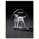 3d glas – kæledyr – hund