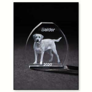 3d glas med kæledyr - hund & kat - Min Personlige Gave