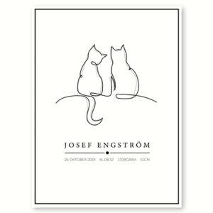 Katte - plakat med navn