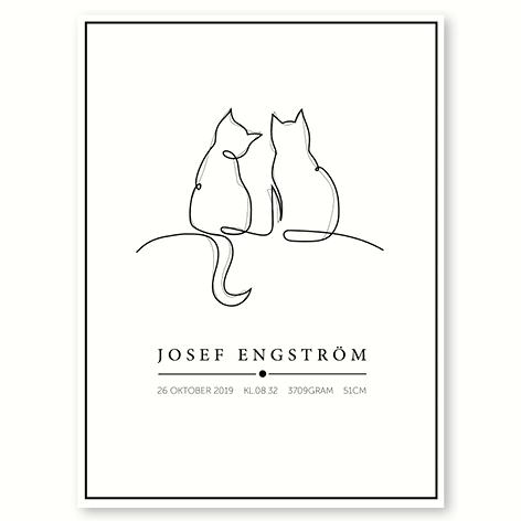 Katte – plakat med navn